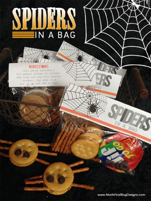 Spiders_bag_pinterest