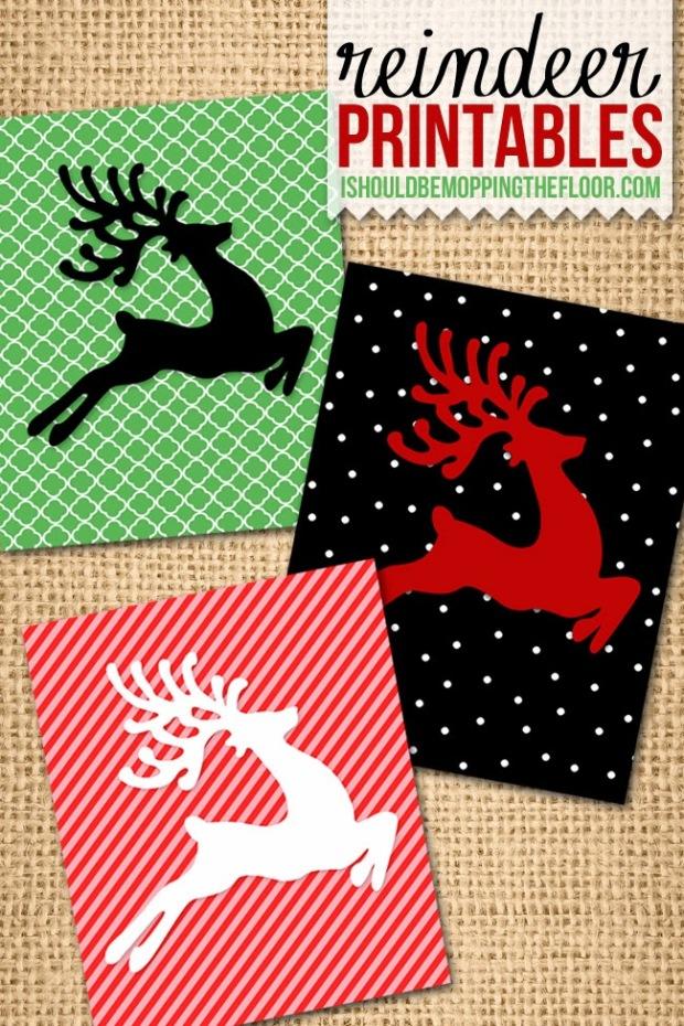 reindeer_preview