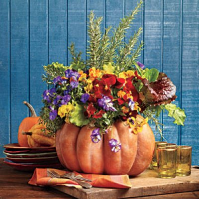 pumpkin-blooms-m